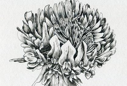 Pen & Ink - GI 19 622