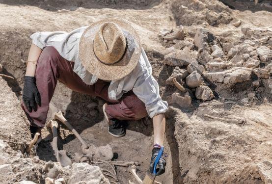 The Archaeology of Surrey - GI 20 823